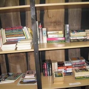 Mini bibliotheek siddeburen