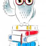 3_owl_A_001